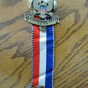 wandertag-bsa-logo-pin-official-award-medal