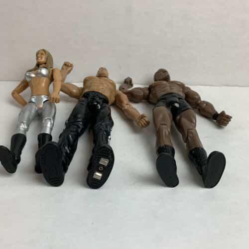 wwe-jakks-bobby-lashley-the-rock-michelle-mccool-wrestling-figure-2003-1999-wwf