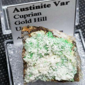 rare-austinite-var-cuprian-thumbnail-specimen