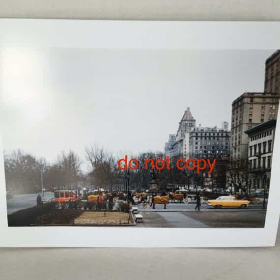 th-ave-carriage-horses-taxi-central-park-s-new-york-city-photograph